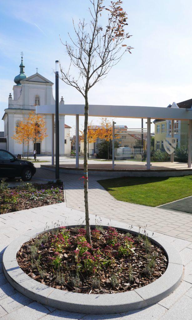 Schulgarten & Dorfplatz